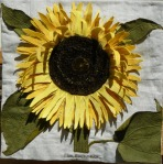 copper plate sunflower