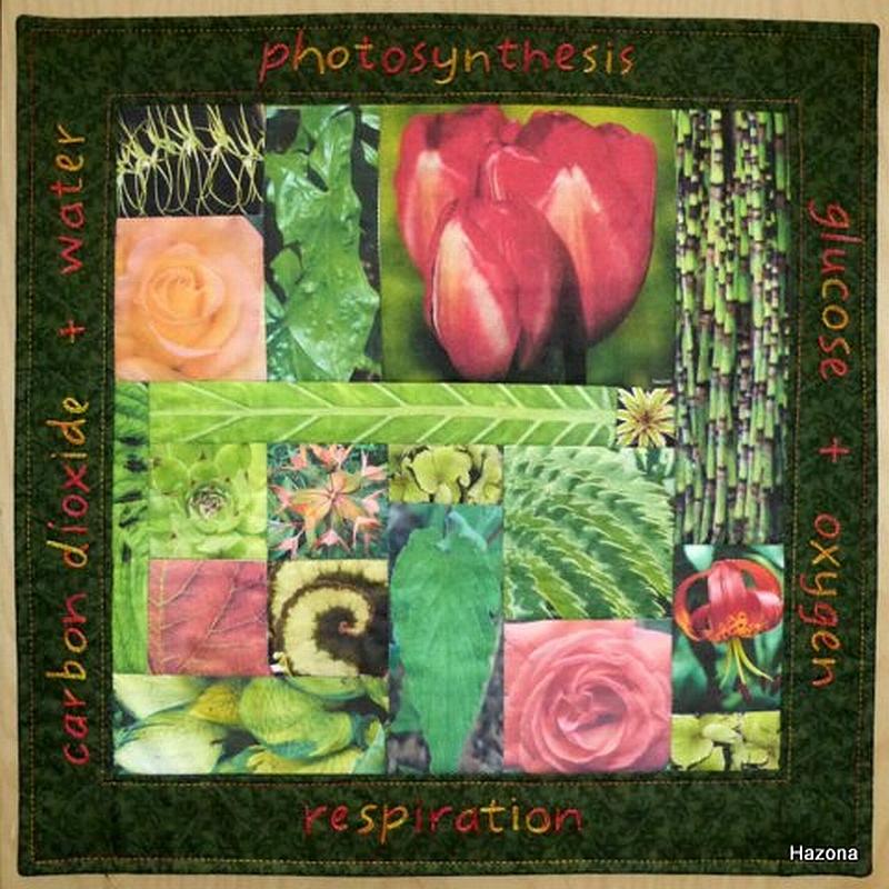 Helen Hazon – Nature – Plants And Flowers