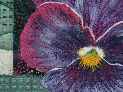 close-up-pansy-1